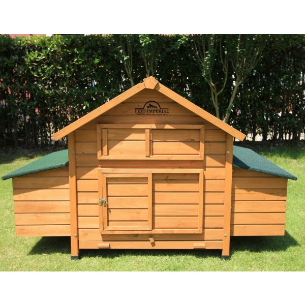Pets Imperial® Savoy Chicken Coop with Double Nest Box