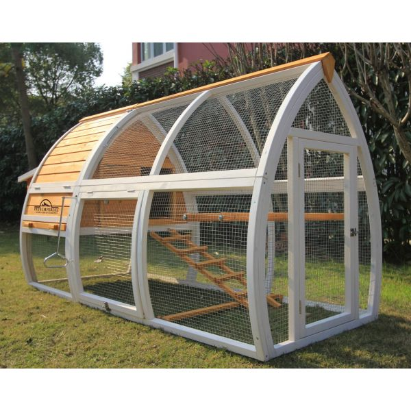 Pets Imperial® Dorchester Chicken Coop